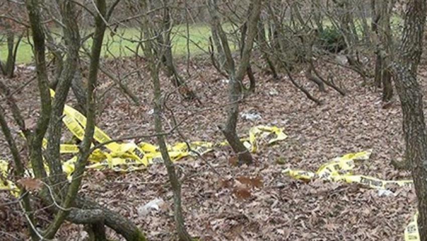 Kafası ve kolu kopan erkek cesedi bulundu