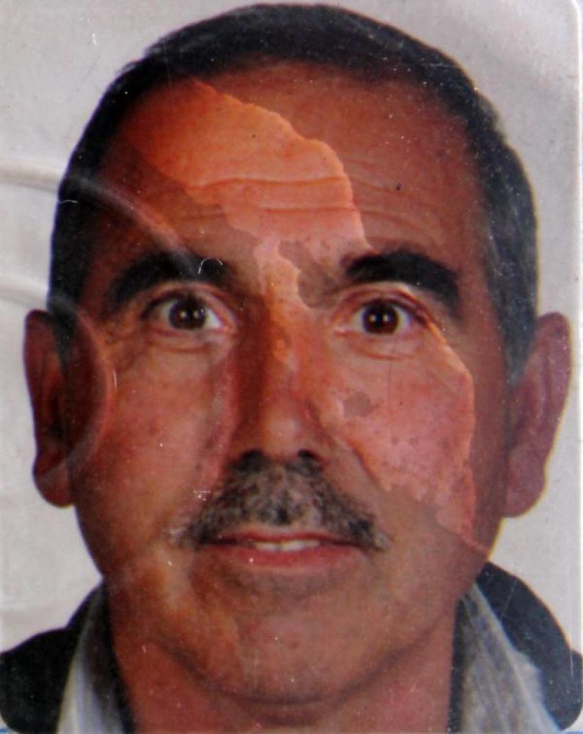 Bursa'da ölüm ıhlamur toplarken yakaladı