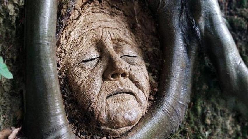 Ağaç köklerine çamurdan heykel yaptı