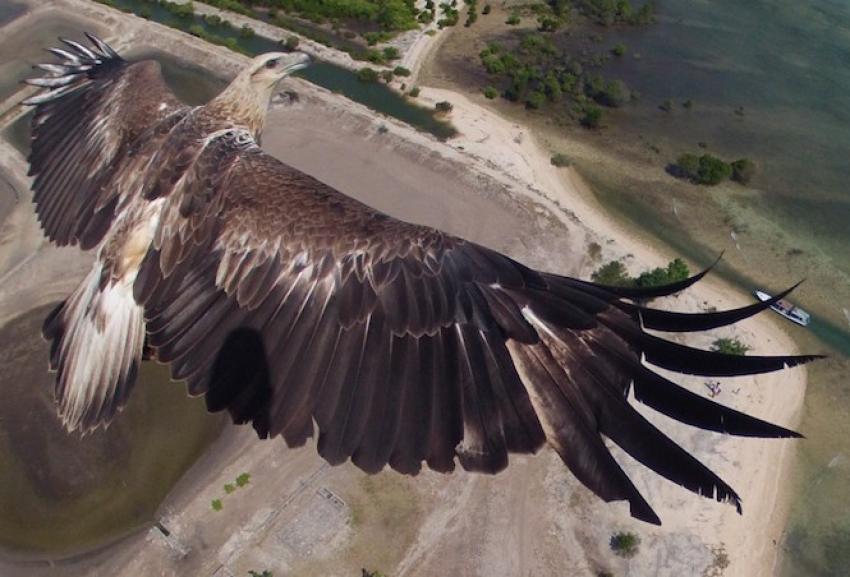 İnsansız hava aracıyla çekilmiş 16 muhteşem fotoğraf!