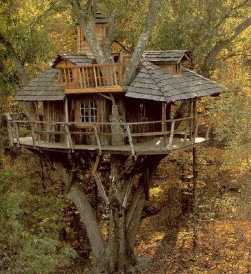 Doğayla iç içe bir ağaç evde yaşamak ister miydiniz?