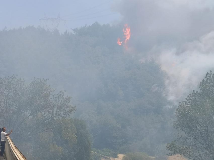 Mudanya'daki yangın hızla yayılıyor