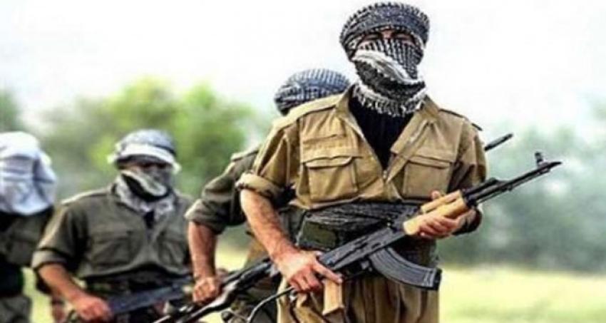Mardin ve Şırnak'ta 2 terörist güvenlik güçlerine teslim oldu