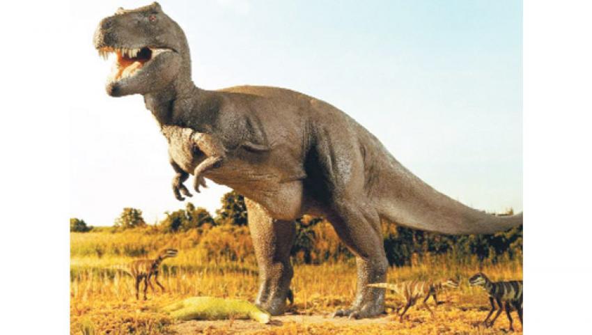 Dinozor fosilinden bakın ne çıktı