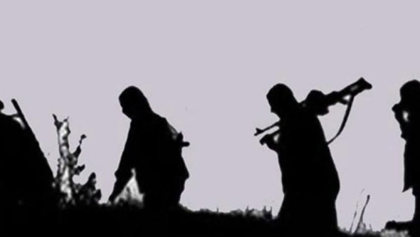 2 senede kaç PKK'lı teslim oldu?