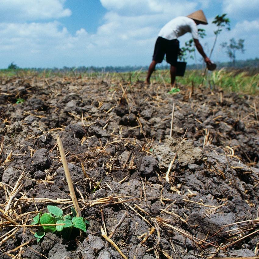 Gıda ve iklim kaynaklı göçmen sayısı1 milyara ulaştı