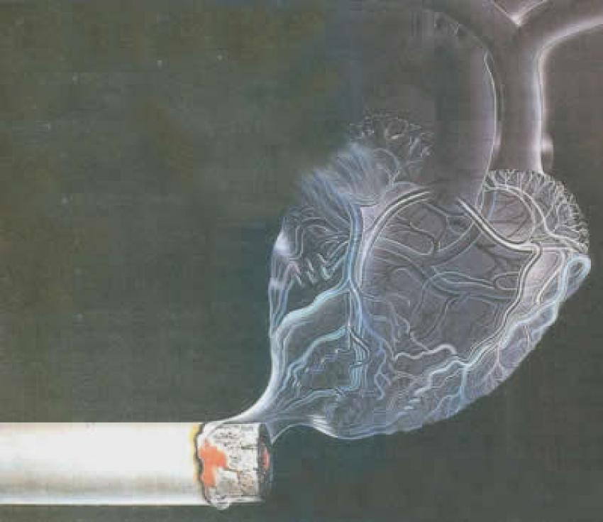Sigara ve kalp hastalığı ömrü belirliyor!