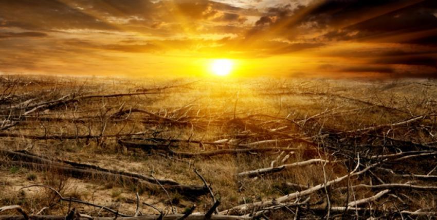 İnsanlığın sonu mu geliyor?