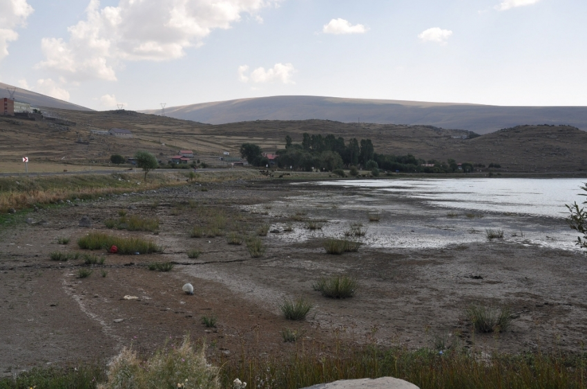 Kuraklık Çıldır Gölünü vurdu