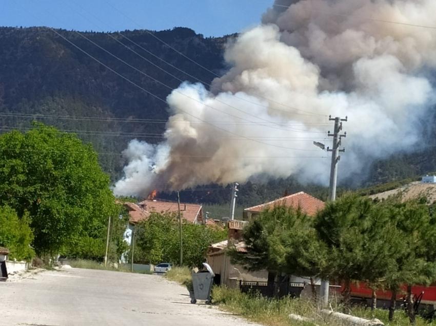 Kısıtlamada mangal yakan 3 kişi 5 hektar ormanı kül etti