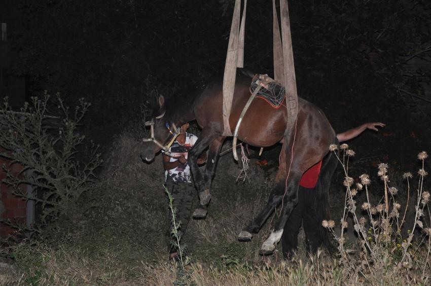 Bursa'da iki ayrı çukura düşen atı böyle kurtardılar