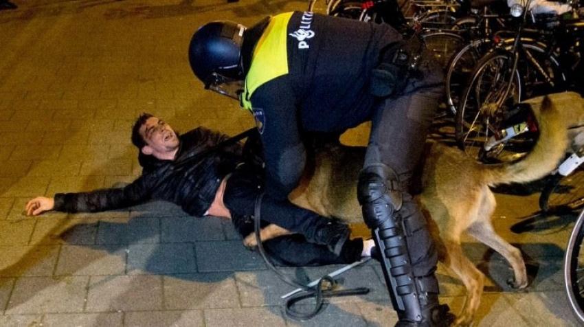 Hollanda köpeklerinin saldırdığı Türk bakın kim çıktı!