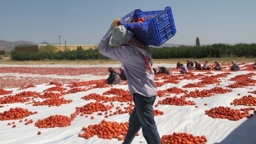 Bursa'ya gelecek mevsimlik işçiler hakkında açıklama