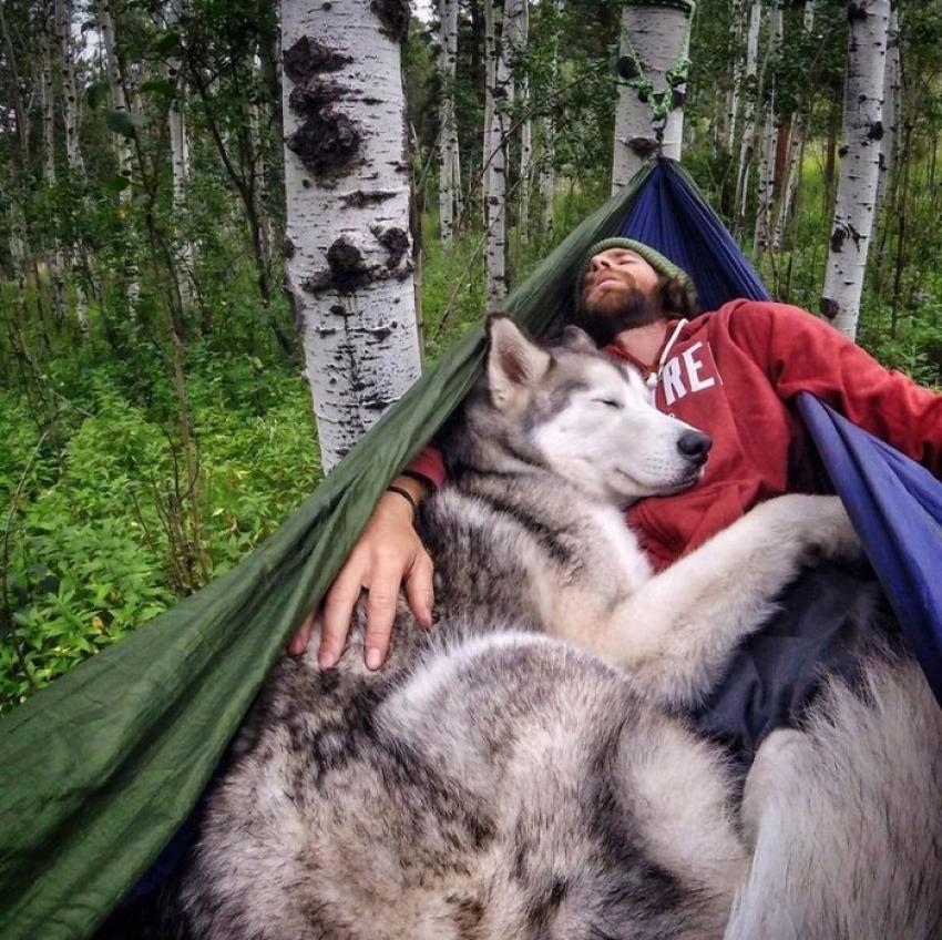 Köpeğiyle dünyayı dolaşıyor