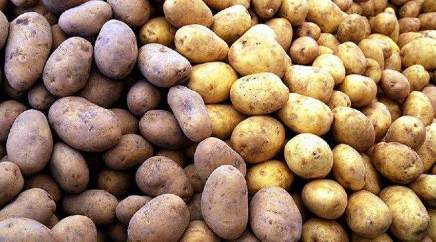 Patatesteki fiyat artışını İran düşürecek