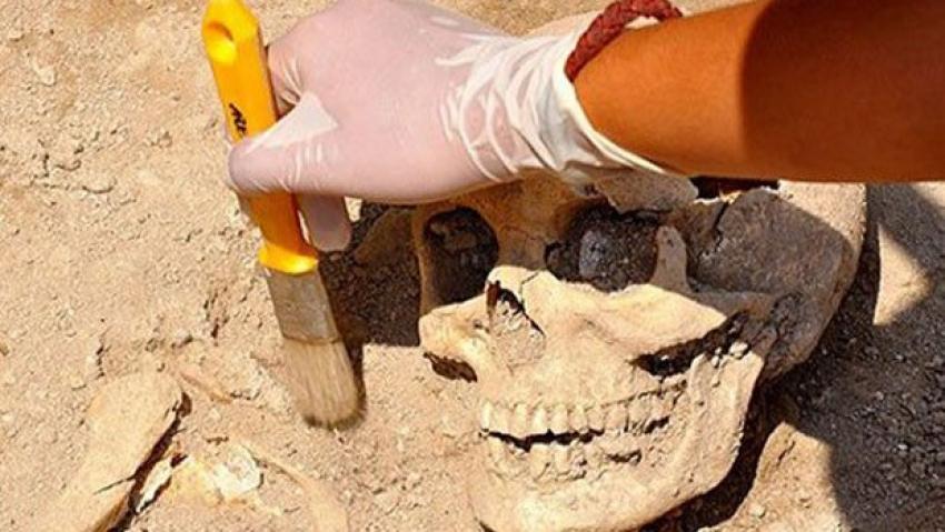430 bin yıllık cinayet!