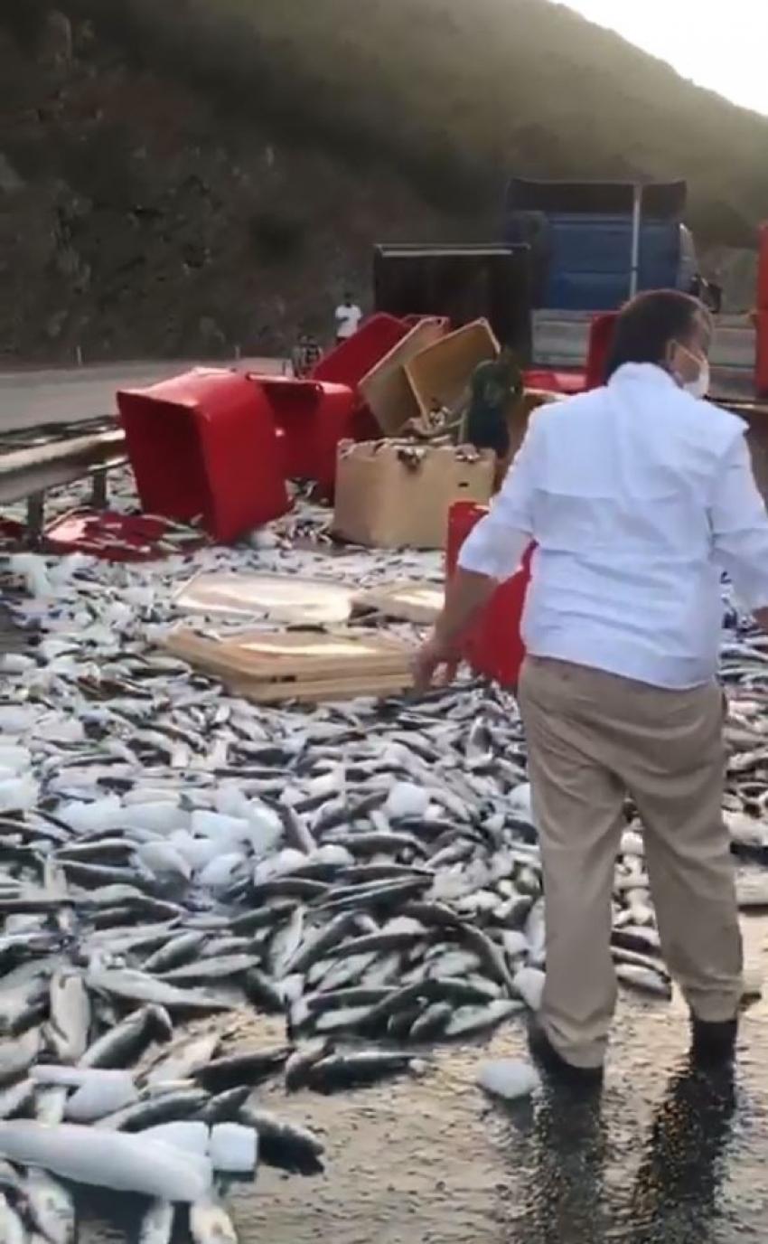 Dorse kapağı açıldı, tonlarca balık yola savruldu