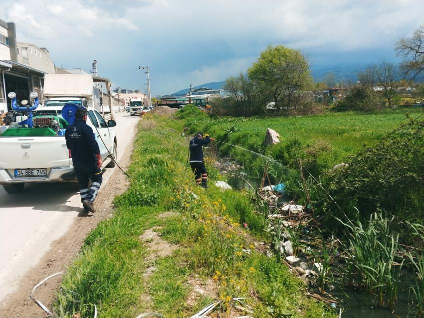 Bursa'da sinekle mücadele