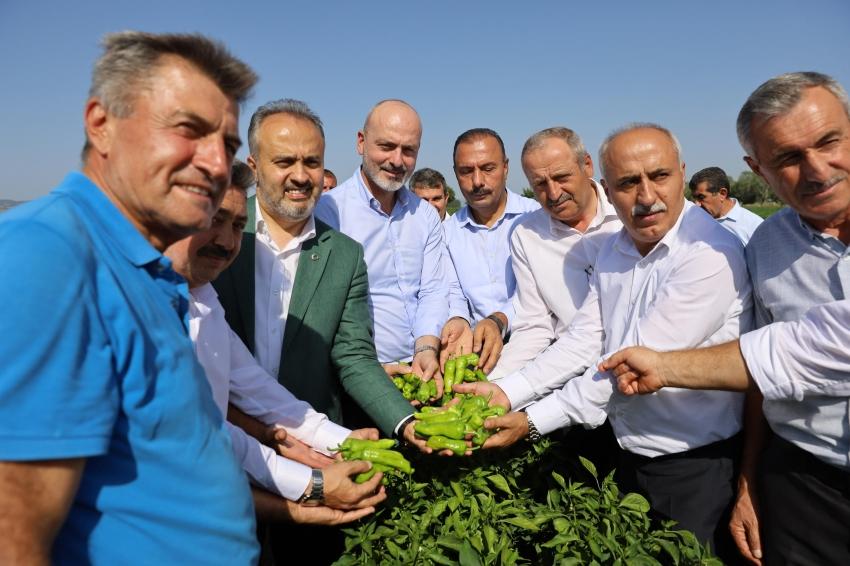 Bursalı çiftçilere büyük destek!