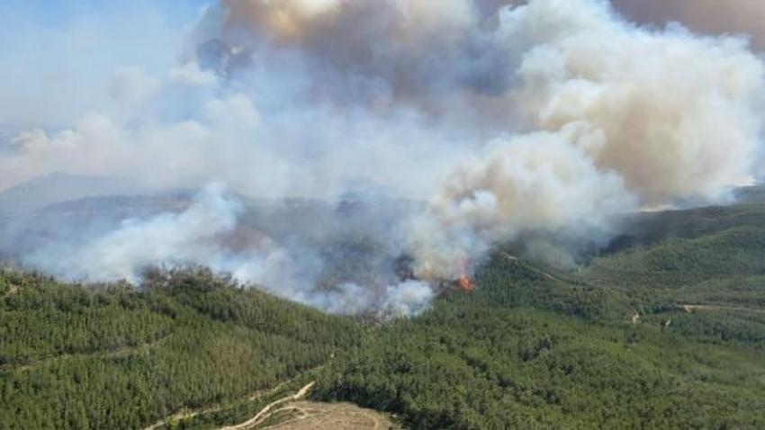 Manavgat'taki orman yangınında kundaklama şüphesi hakkında açıklama