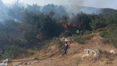 Balıkesir'de orman yangını!