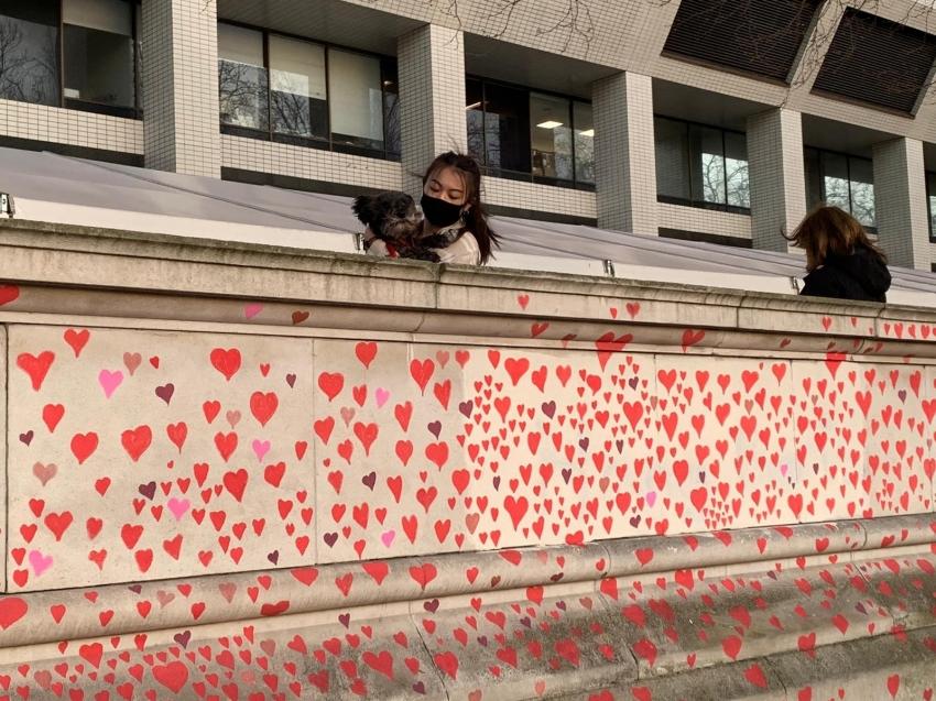 Londra'da Covid-19 kurbanlarının anısına yaklaşık 150 bin kalp çizilecek