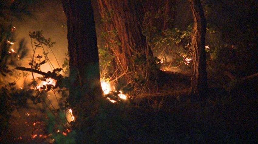 Abhazya'da orman yangını söndürülemedi