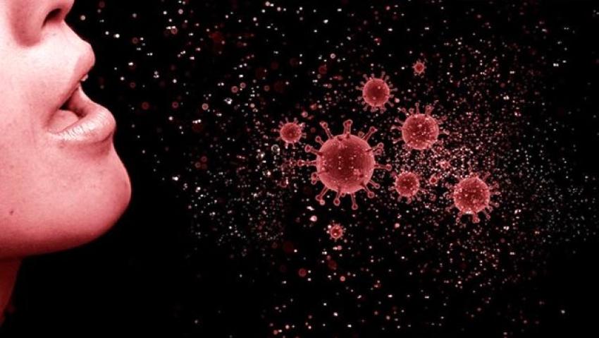 Mutasyonlu virüs nedeniyle bir kişi Edremit'te karantina altına alındı