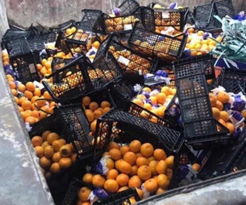 İstanbul'dan Rusya'ya gönderilen mandalinalar yanlış etiket kurbanı oldu