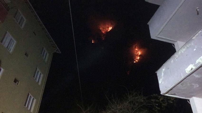 Bartın'daki orman yangınında 7 ev tahliye edildi