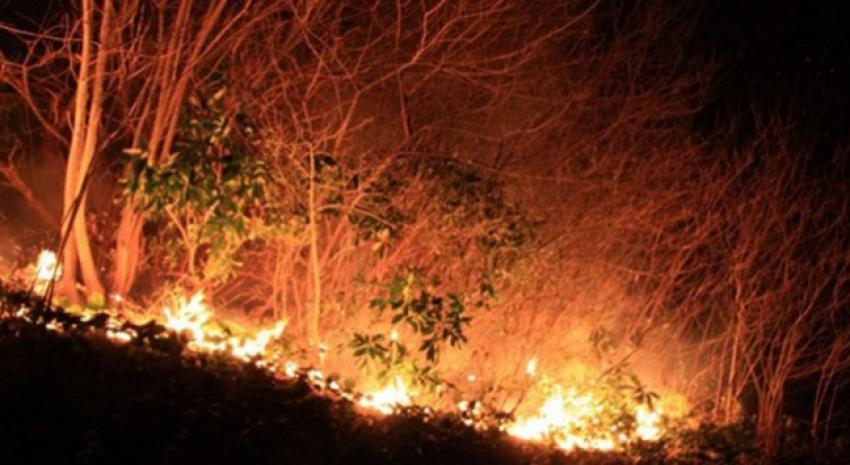 Antalya ve Muğla için yangın uyarısı