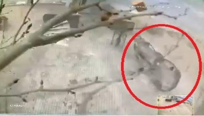 Bursa'da lodosun uçurduğu otomobil ve kamelya