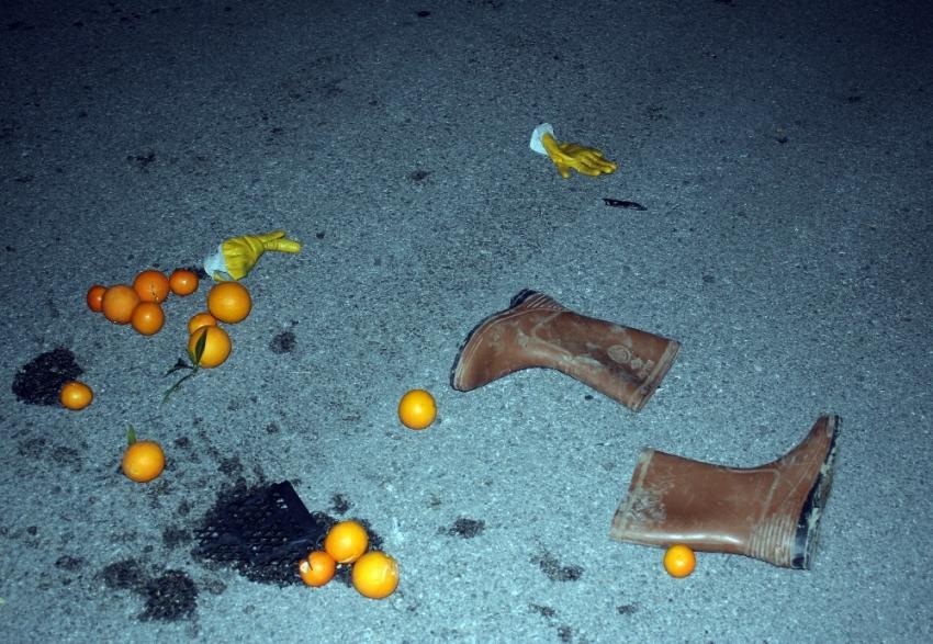 Portakal toplamaktan evine dönüyordu ama...