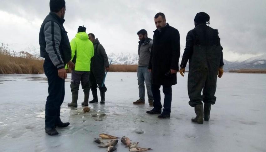 Van'da 'Eskimo' usulü balık avı
