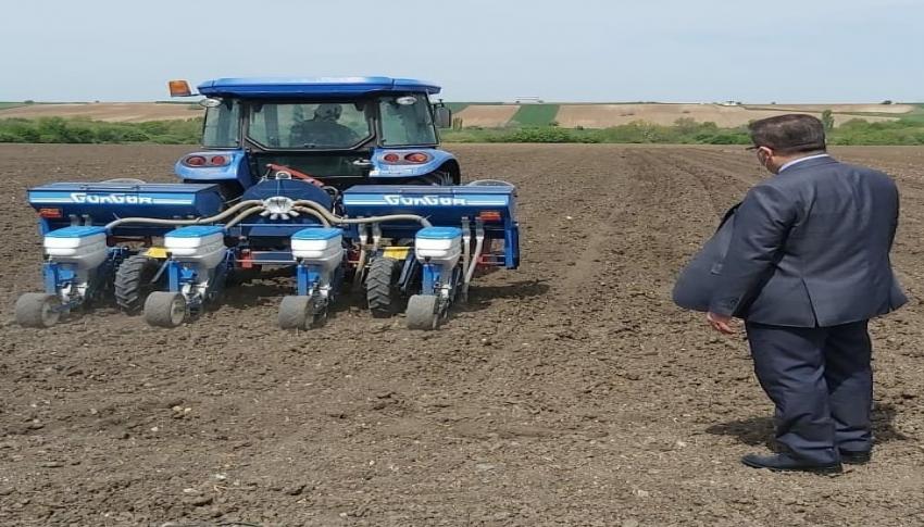 Yerli ve milli mısır ve ayçiçek tohumları toprak ile buluştu