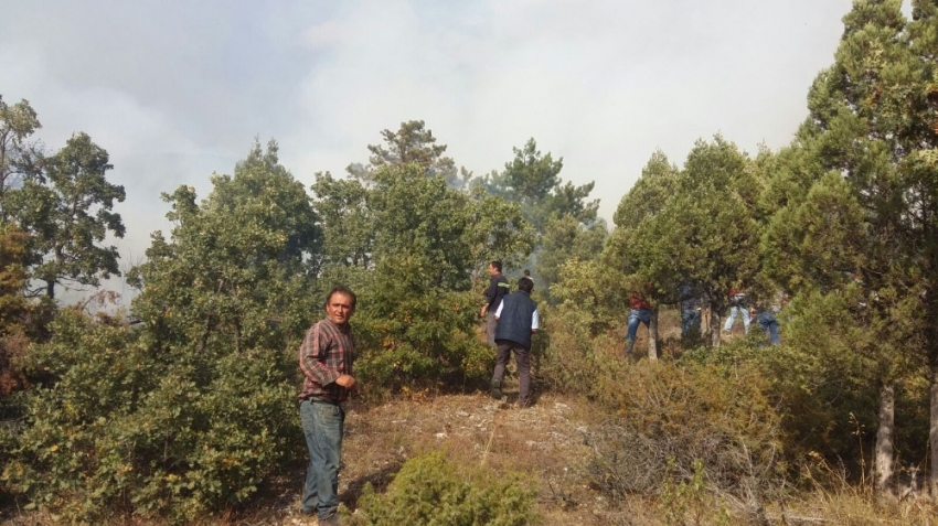 Domaniç'teki orman yangını kontrol altına alındı