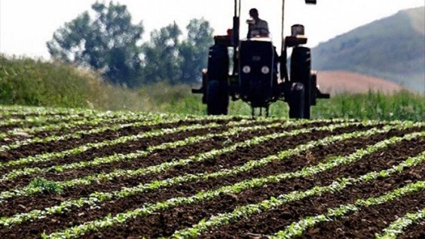 Bursa'da sulanan tarım arazisi