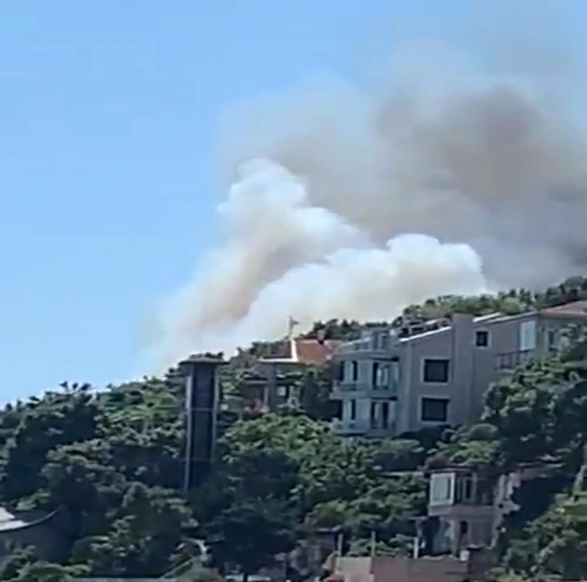 Burgazada'da korkutan orman yangını