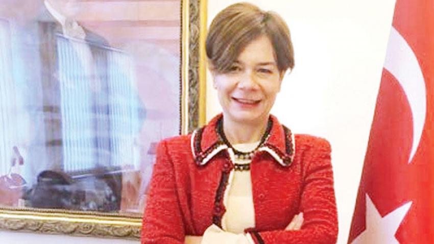Türkiye Büyükelçisi'nden Ermenistan Büyükelçisi'ne tepki