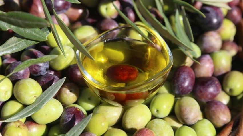 Zeytin ve zeytinyağı ihracatı geriledi