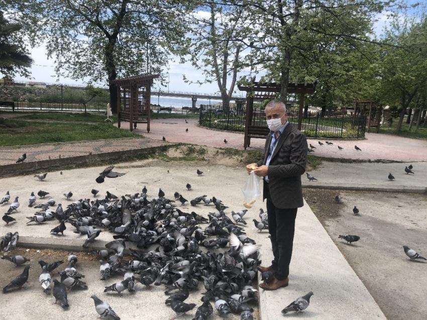 Sokak hayvanlarını gazeteciler besledi