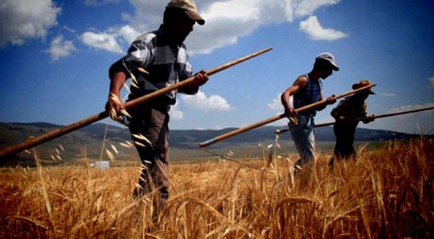 Davutoğlu'ndan çiftçiye destek müjdesi