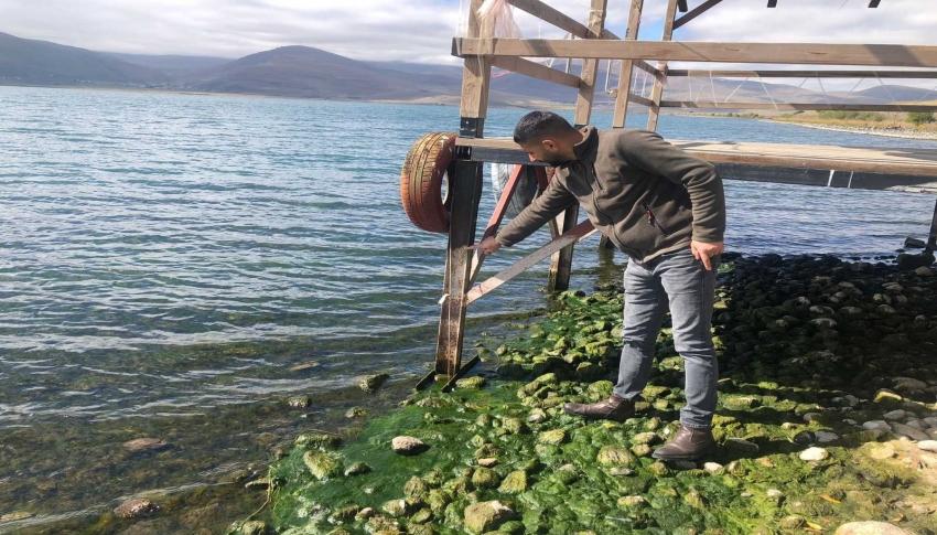 Kuraklık Çıldır Gölü'nü de vurdu, su seviyesi düştü