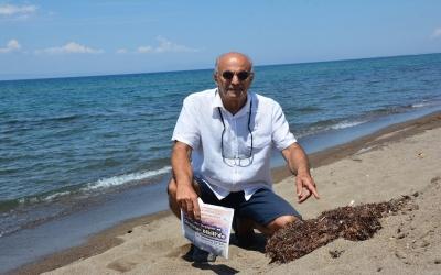 Marmara'da deniz salyası, İzmir'de Sargassum tehdidi
