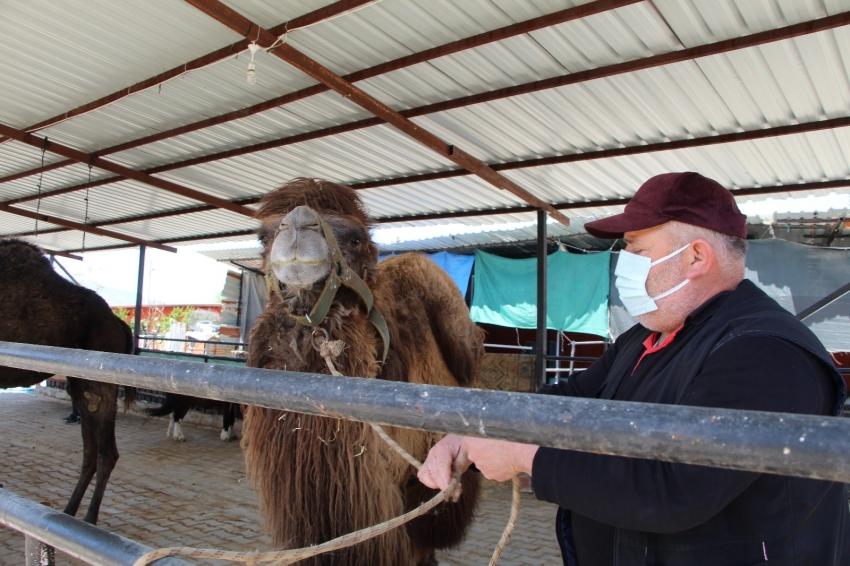 3 deveyle başladı, şimdi çiftlik kurdu