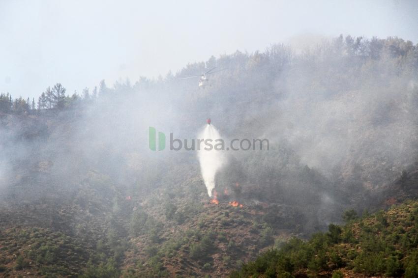 Fethiye'deki orman yangını kontrol altına alındı