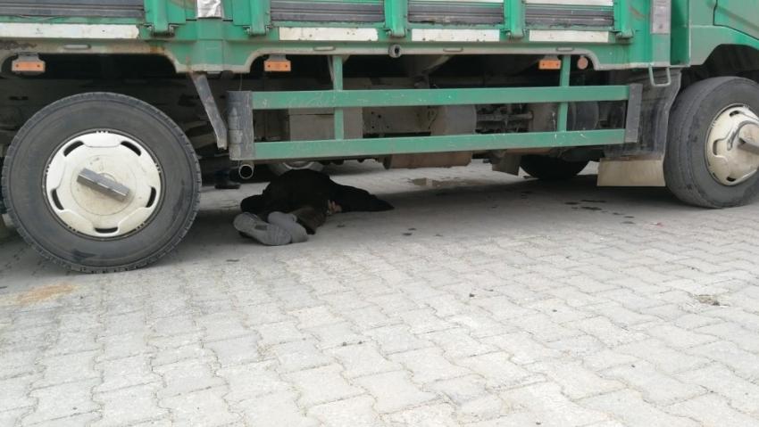 Bursa'da yaşlı adam kamyonun altında kaldı