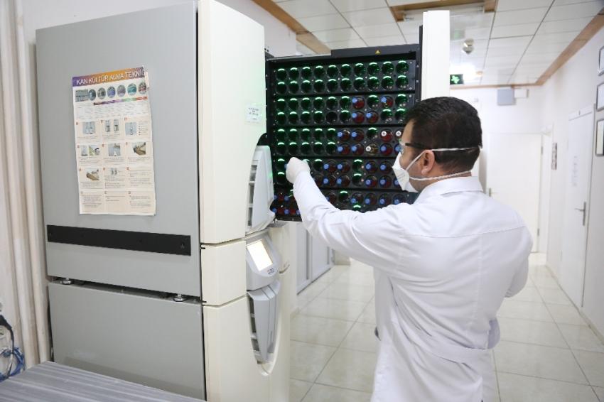 """Bilim adamları yerli """"kene"""" aşışı için bir araya gelecek"""