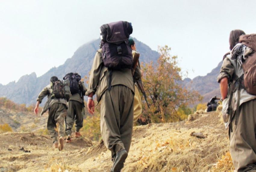 1 PKK'lı örgüt üyesi teslim oldu