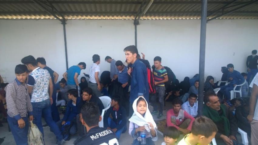 113 kaçak göçmen yakalandı